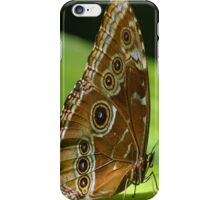 Beautiful Butterfly Wings of Meadow Brown iPhone Case/Skin