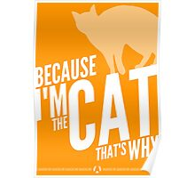 Because I'm The Cat That's Why Poster