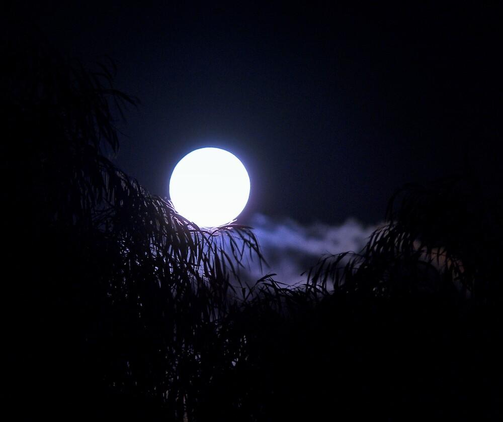 Gemini Moon by friartucker
