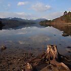 glen affric and loch beinn a'mheadhoin. by highlandscot