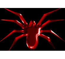 Red Spider Photographic Print