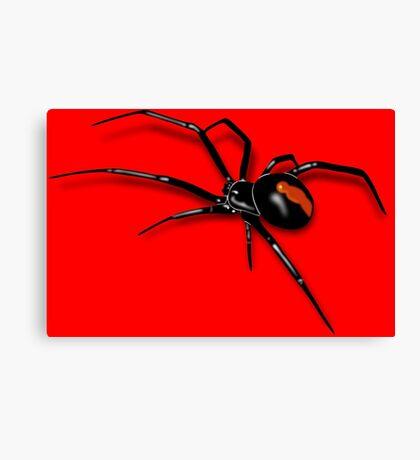 Redback Spider Black Widow Canvas Print
