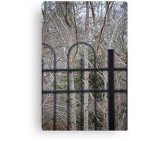 Trees through Fence Canvas Print