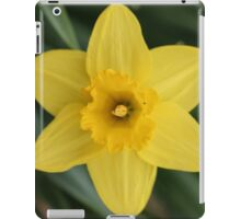 Happy Spring iPad Case/Skin