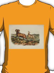 James Audubon - Quadrupeds of North America V2 1851-1854  Rocky Mountain Sheep T-Shirt