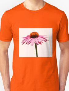 Echinacea Purpurea on White Background T-Shirt