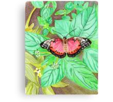 Eve's garden Canvas Print