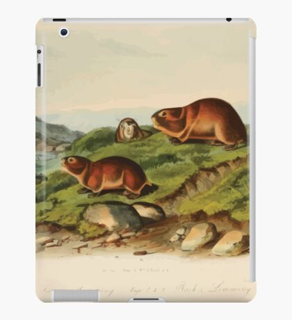 James Audubon - Quadrupeds of North America V3 1851-1854  Tawny Lemming Back's Lemming iPad Case/Skin