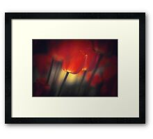 Red Glow at Dawn Framed Print
