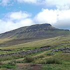 Standing proud Pen-y-ghent by Funkylikeabee