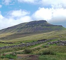 Pen-y-ghent, Yorkshire Dales by Funkylikeabee