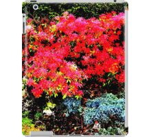 Burst of Colour iPad Case/Skin