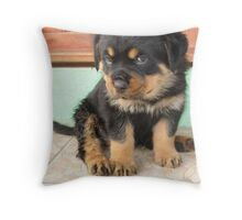 I Don't Need to be Told I am Cute ..... Throw Pillow