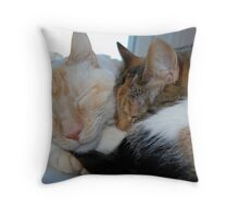 Happy Snooze Throw Pillow