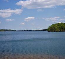 Belews Lake by paulboggs