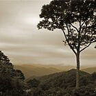Smoky Mountains by Chet  King