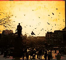 Pigeons take flight in Trafalgar Square by Elana Bailey