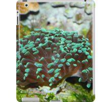 Beautiful coral iPad Case/Skin