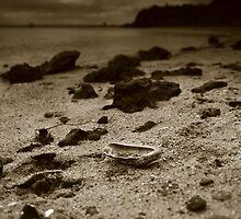das verlorene Kernoberteil des Pfostens by Andrew Schweitzer