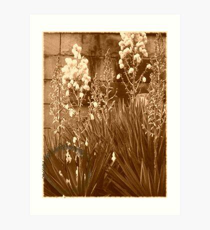 Cemetary Flowers Art Print