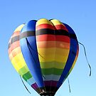 Ballooning Over Bowral by Sharon Robertson