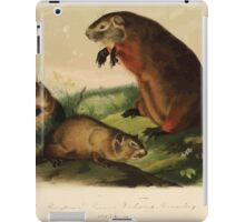 James Audubon - Quadrupeds of North America V1 1851-1854  Maryland Marmot Woodchuck Groundhog iPad Case/Skin
