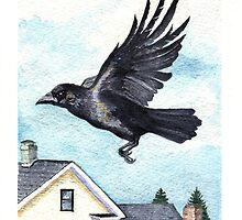 Fly By - crow in flight by Carole Andreas