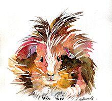 guinea pig by juliecronin
