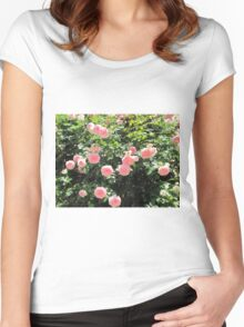 Italian roses Women's Fitted Scoop T-Shirt