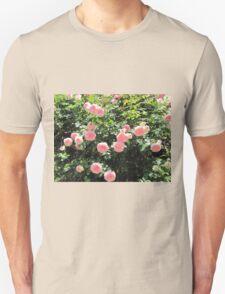 Italian roses T-Shirt