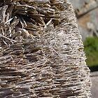 Toothpicks by Angela Harelson