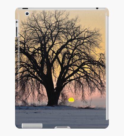 Cottonwood Cold Sunrise iPad Case/Skin