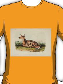 James Audubon - Quadrupeds of North America V2 1851-1854  Common American Deer Fawn T-Shirt