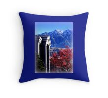 A Splash of Red in Winter Throw Pillow