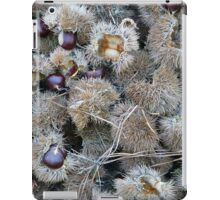 Chinese Chestnuts iPad Case/Skin