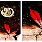 Red leaf diptych by ragman