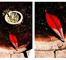 Red leaf diptych by ragman