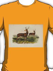 James Audubon - Quadrupeds of North America V3 1851-1854  Columbian Black Tailed Deer T-Shirt