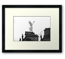 Taking Off ?!?   Framed Print