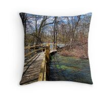 The Crossing II Throw Pillow