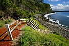 Bannister Point - Mollymook by Darren Stones