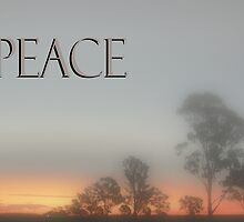 Peace © Vicki Ferrari Photography by Vicki Ferrari