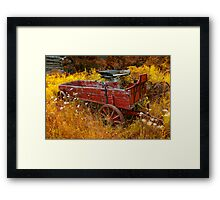 Wagon Wheels D Framed Print