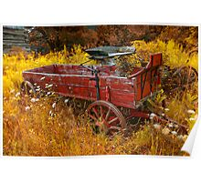 Wagon Wheels D Poster