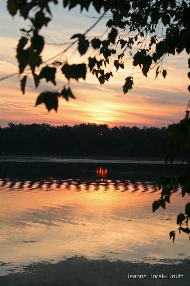Mississippi sunset by Jeanne Horak-Druiff