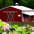 Big Red Barn by R&PChristianDesign &Photography