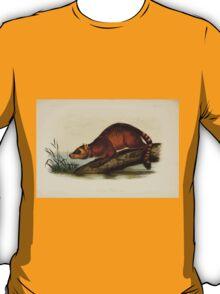 James Audubon - Quadrupeds of North America V3 1851-1854  Crab Eating Raccoon T-Shirt