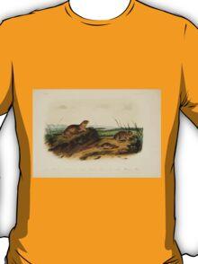 James Audubon - Quadrupeds of North America V3 1851-1854  American Tonslik, Oregon Meadow Mouse, Texan Meadow Mouse T-Shirt
