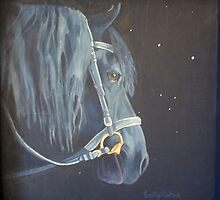 Midnight's Horse by sally seabright