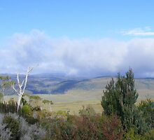 Vale of Belvoir (Cradle Mt area - Tasmania) by gaylene
